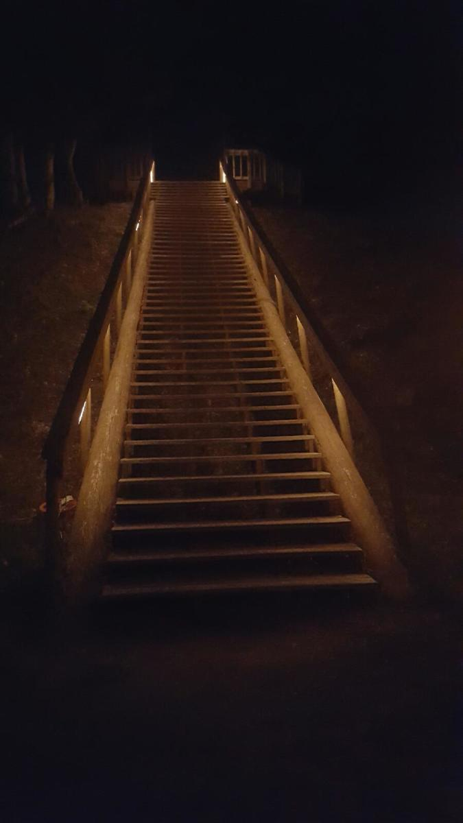 During the Moon Over the Mounds events, the stairs to Mound A are lit up so attendees can climb up for a better view of the moon. Crystal River Archaeological State Park offers guided night tours of the Native American mounds from September through March.