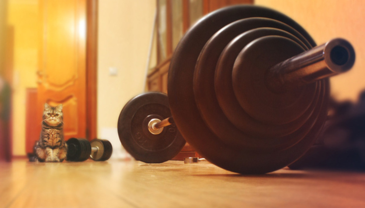 Despite our busy lives, we need to find time to add some exercise to the schedule. Photo - iStock